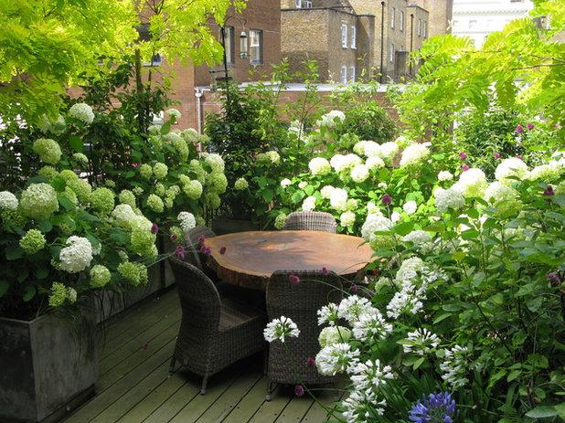 Contemporary Landscape by The London Gardener Ltd