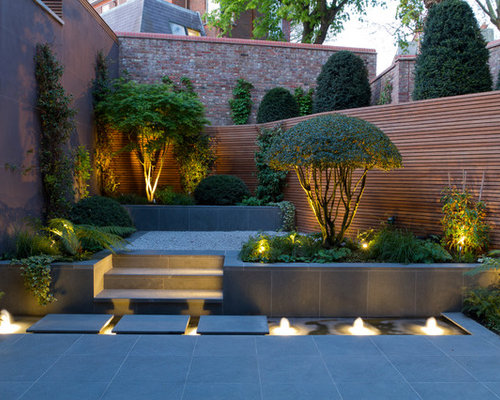 Tropical backyard landscaping ideas - This Is An Example Of A Contemporary Backyard Garden In Berkshire With