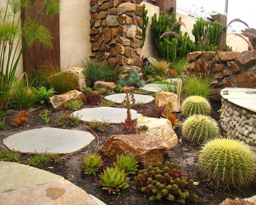 cactus garden ideas houzz