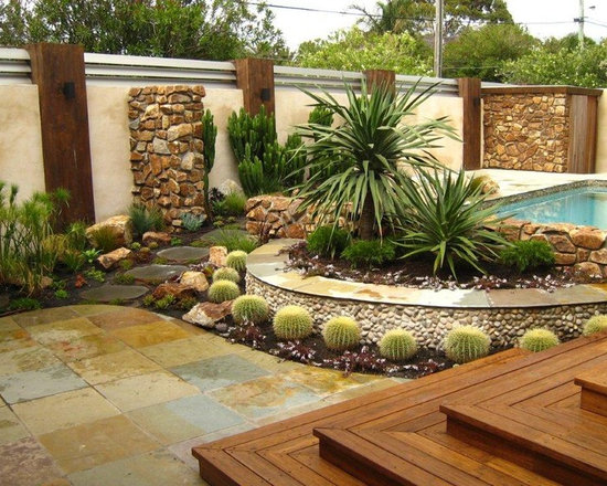 Best 25 Cacti Garden Ideas On Pinterest Outdoor Cactus