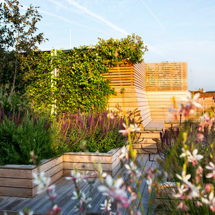Inspiration for a large modern full sun rooftop landscaping in London.