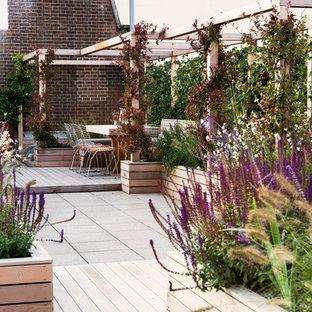 Foto di un grande giardino minimalista esposto in pieno sole sul tetto