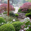 Dream Spaces: Discover a Secret Garden of Your Own
