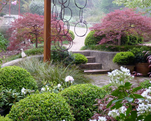 Japanese garden plants home design ideas pictures for Plants used in japanese gardens