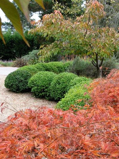 Que planter dans son jardin au mois d 39 octobre - Que planter dans son jardin ...