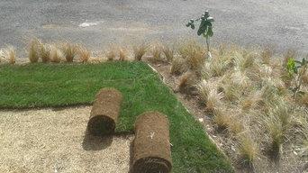 Lawn install.
