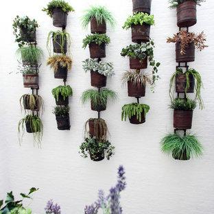 Inspiration pour un jardin vertical urbain.