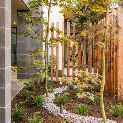 This is an example of a mid-sized contemporary side yard mulch landscaping in Melbourne.