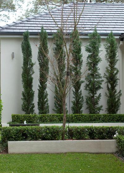 Traditional Garden by Joanne Green Landscape & Interior