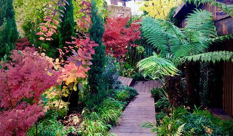 7 Path Ideas for Your Contemporary Garden
