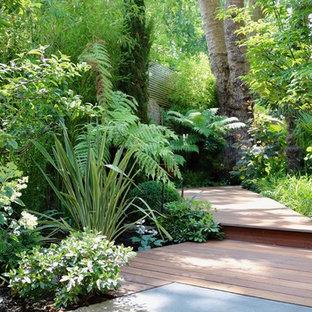 Großer, Halbschattiger, Geometrischer Tropischer Garten hinter dem Haus mit Dielen und Gartenweg in London