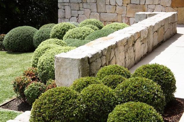 Modern Garden by Secret Gardens