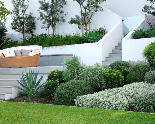 design ideas for a large modern backyard retaining wall landscape in sydney
