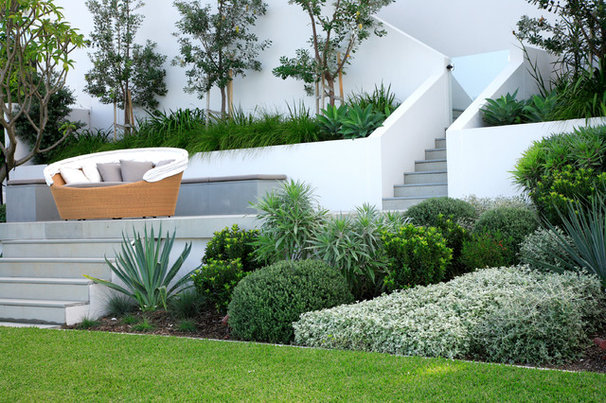 Modern Landscape by Secret Gardens