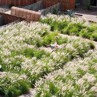 Exempel på en industriell trädgård i full sol