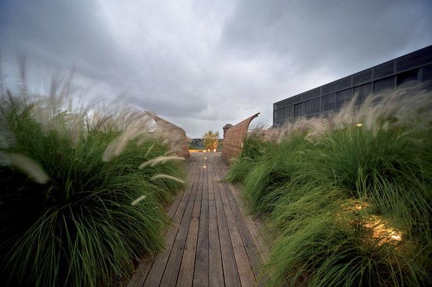 Морской Сад by Dale Jones-Evans Pty Ltd Architecture