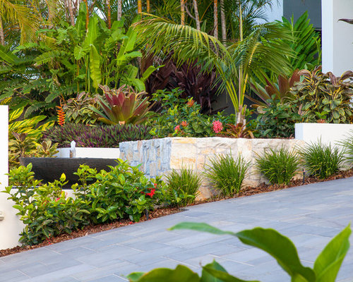 this is an example of a mid sized tropical front yard garden in brisbane with