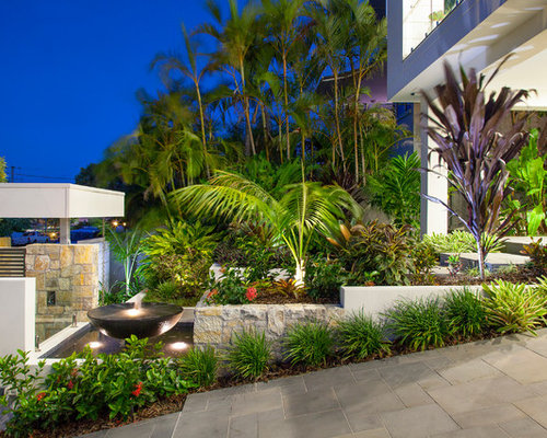 Small Backyard Landscaping Ideas Brisbane : Is an example of a mid sized tropical front yard garden in brisbane