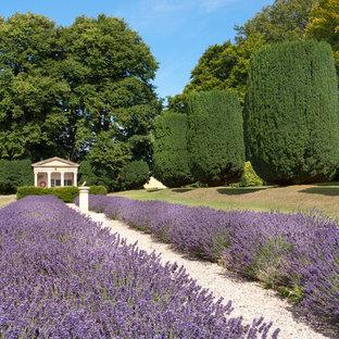 Неиссякаемый источник вдохновения для домашнего уюта: участок и сад на заднем дворе в средиземноморском стиле с покрытием из гравия и садовой дорожкой или калиткой