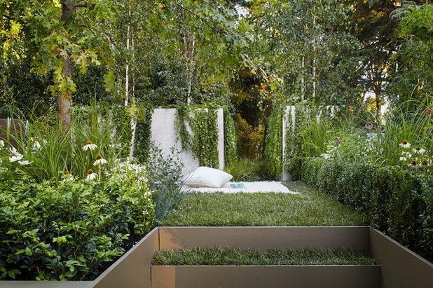 Transitional Garden by Chris Gursansky