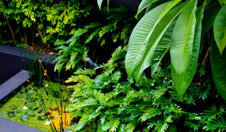 So Your Garden Style Is: Balinese