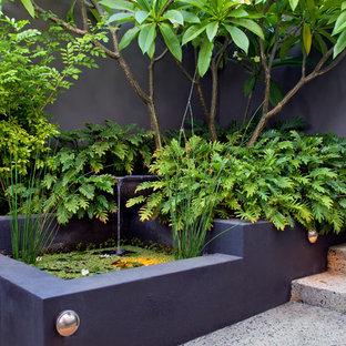 Bild på en liten tropisk gårdsplan i full sol, med trädäck och en fontän