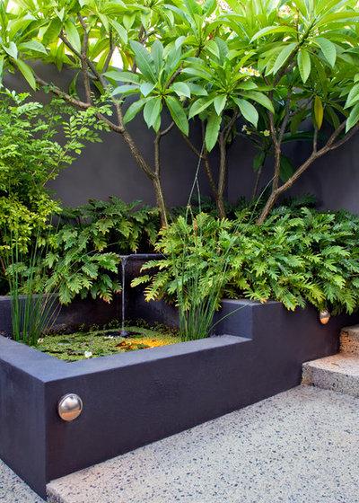 Exótico Jardín by Cultivart Landscape Design