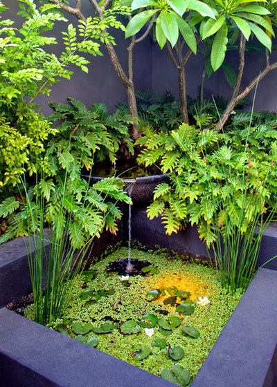 Contemporary Garden by Cultivart Landscape Design