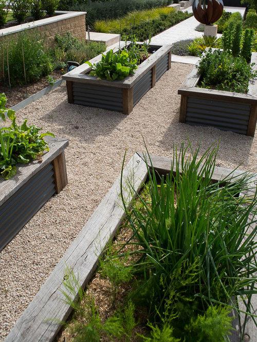 Jardin potager moderne : Photos et idées déco de jardins potagers