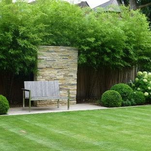 Photo of a contemporary backyard garden in London.