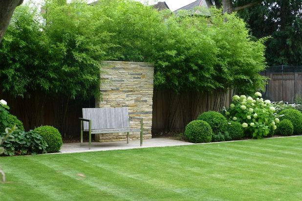 Conseils de pro pour associer vos plantes au jardin for Arbre jardin contemporain
