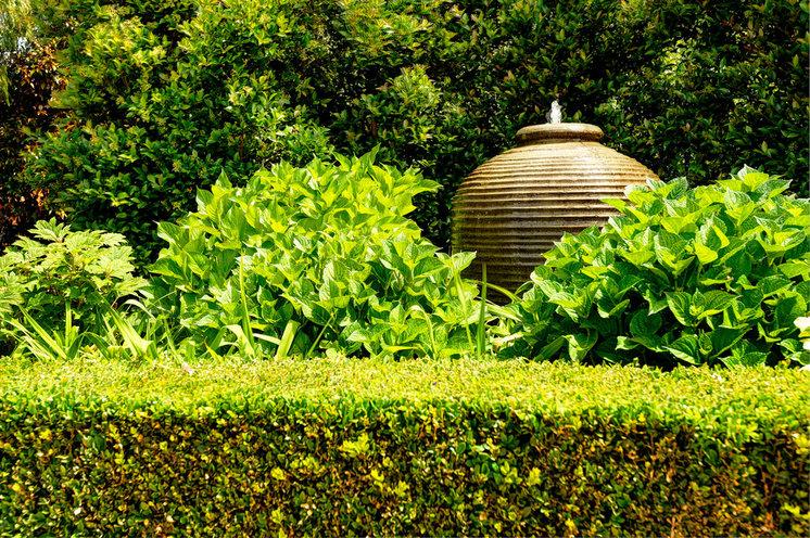 Modern Landscape by AQL Landscape Design