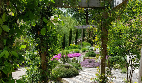 Garden Tour: Pretty Terraces Transform a Shallow, Sloping Plot