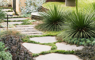 How Do I... Keep My Garden Alive in a Drought?