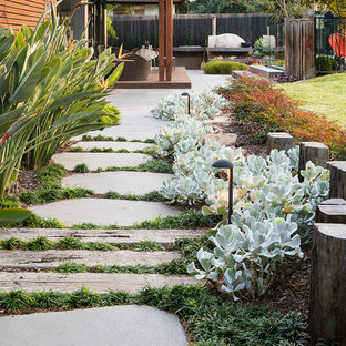 Photo of a contemporary backyard full sun garden in Melbourne with concrete pavers.