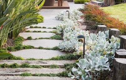 21 Urban Garden Paths to Follow