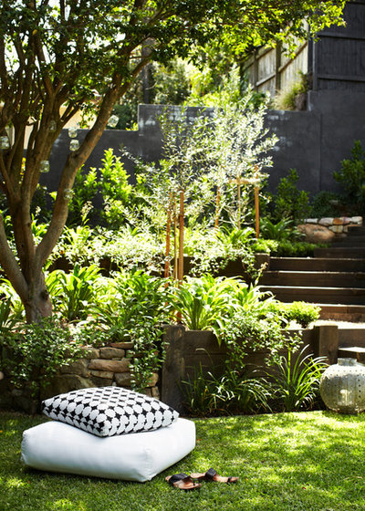 Contemporary Garden by Harrison's Landscaping