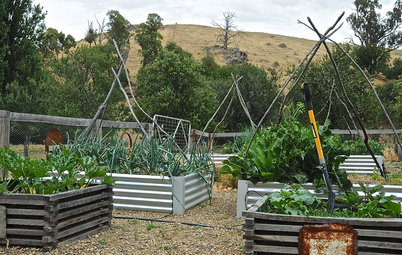 9 Ways to Change Up Your Vegetable Garden for the Coming Season