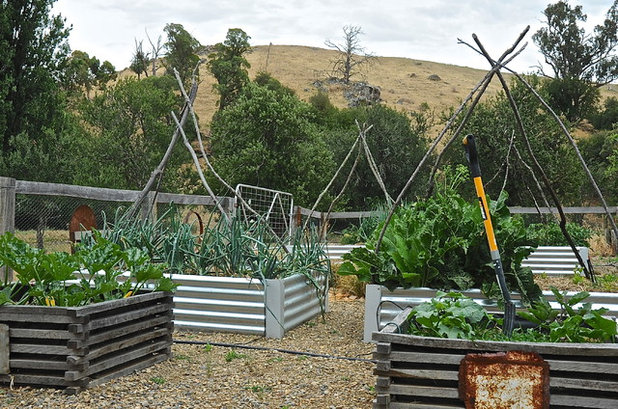 9 ways to change up your vegetable garden for the coming for Vegetable garden design australia