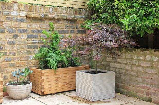 Trendy Have by Sarah Kay Garden Design