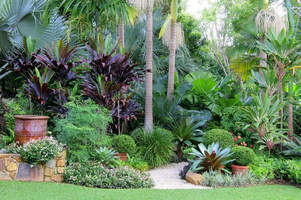 a gardener u0026 39 s guide to subtropical climates