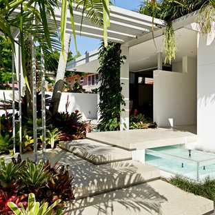 Design ideas for a tropical landscaping in Brisbane.