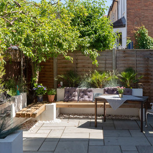 This is an example of a small contemporary garden in London with a potted garden.