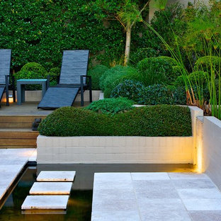 Design ideas for a contemporary partial sun backyard stone water fountain landscape in Sydney.