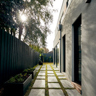 This is an example of a modern side yard garden in Melbourne with a container garden and concrete pavers.