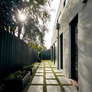 Moderner Garten neben dem Haus mit Kübelpflanzen und Betonplatten in Melbourne