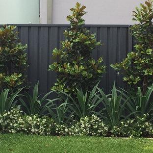 Inspiration pour un jardin arrière design de taille moyenne avec des pavés en pierre naturelle.