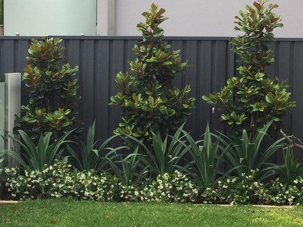 Contemporary Garden by SITEDESIGN+STUDIOS