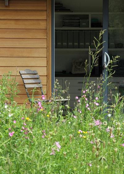 コンテンポラリー 庭 by Amanda Broughton Garden Design