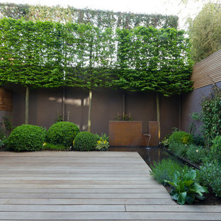 Contemporary garden in Surrey with a water feature.